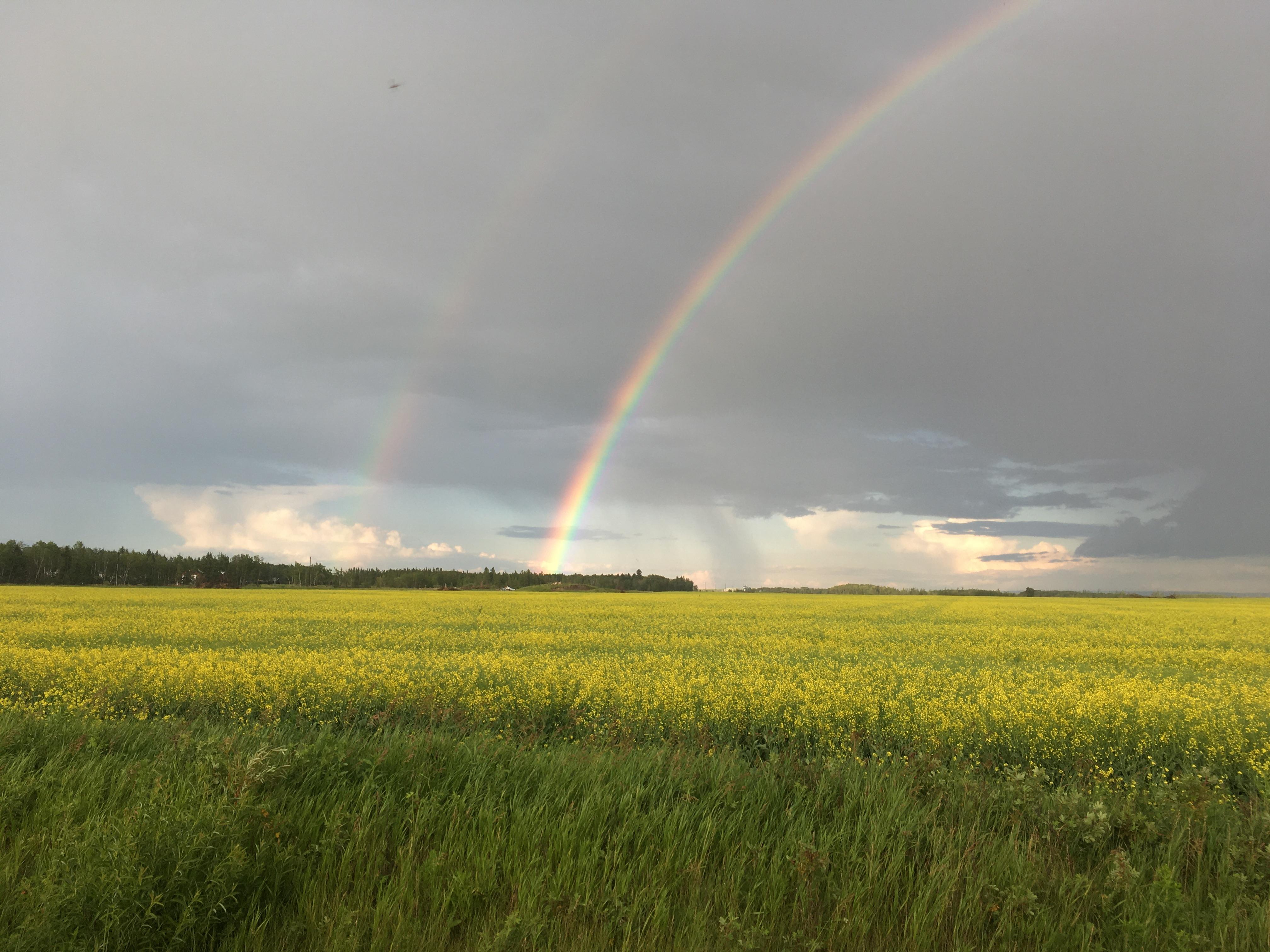 Eastern Saskatchewan, Saskatchewan, Saskatchewan    - Photo 7 - RP9619627030